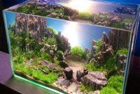 Cara Membuat Aquarium Sederhana Untuk Ikan Hias Air Tawar
