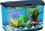 Cara Membuat Aquarium Aquascape